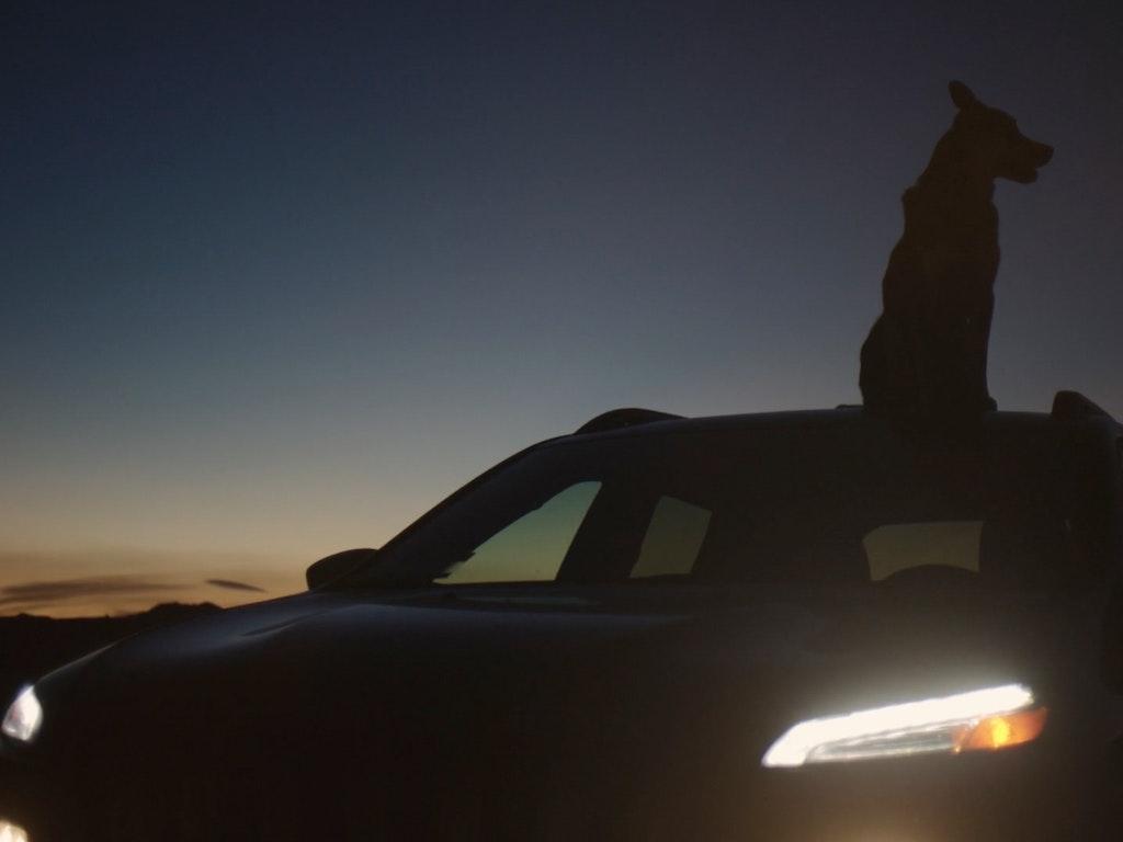 Jeep 'Wild'