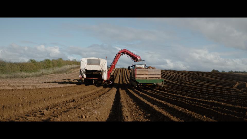 Modern Farming with Tesco