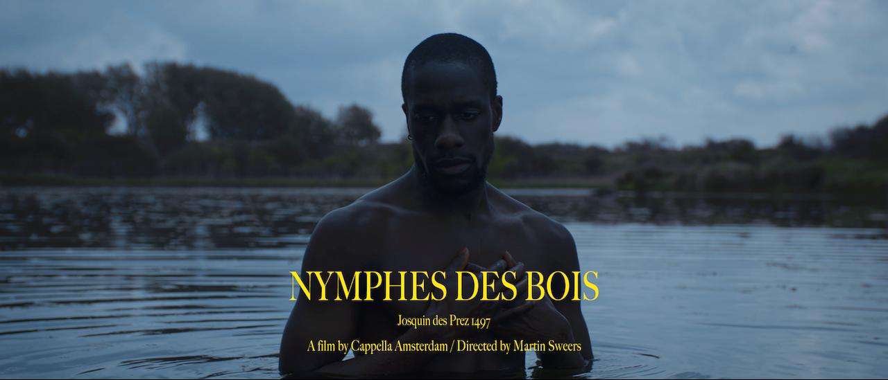 Nymphes Des Bois