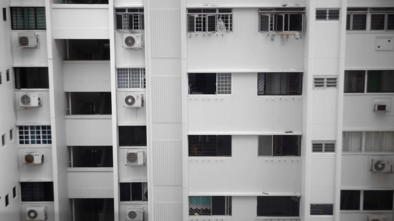 A Cat Murder in Singapore
