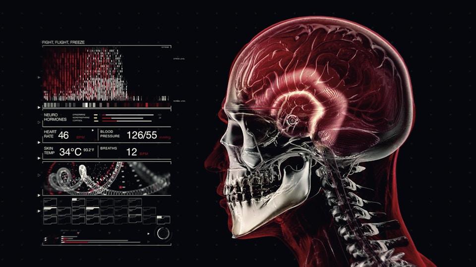 Body Hack Series 1 / Network TEN
