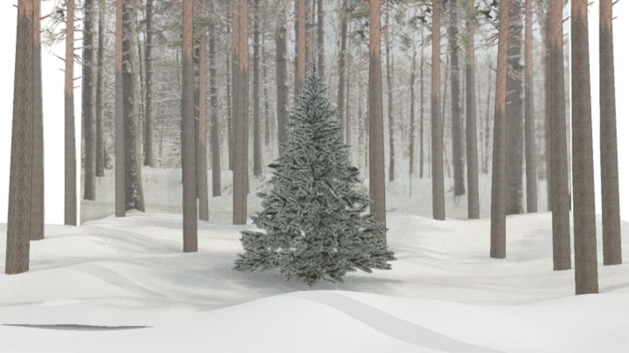 Sky Christmas - Mark Paul - Sky -