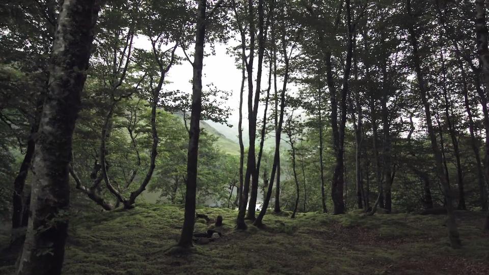 Into Glen Coe | Experimental