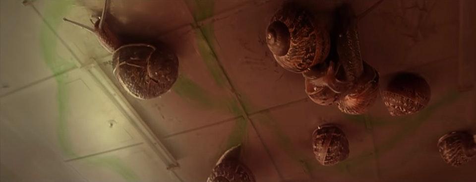 Benee - Snail -