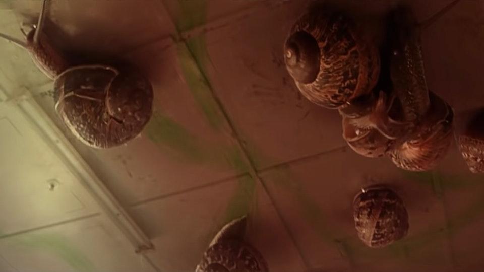 Benee - Snail