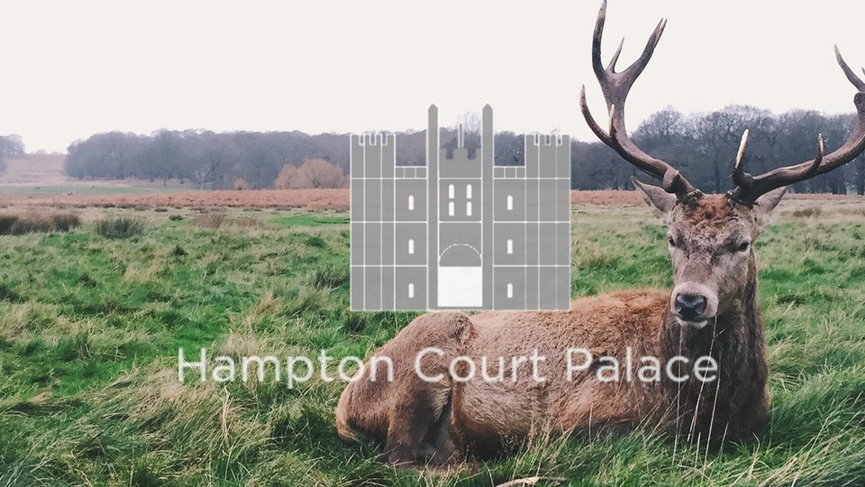 Hampton Court films