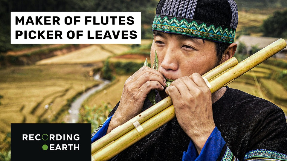 Hmong flute and leaf playing