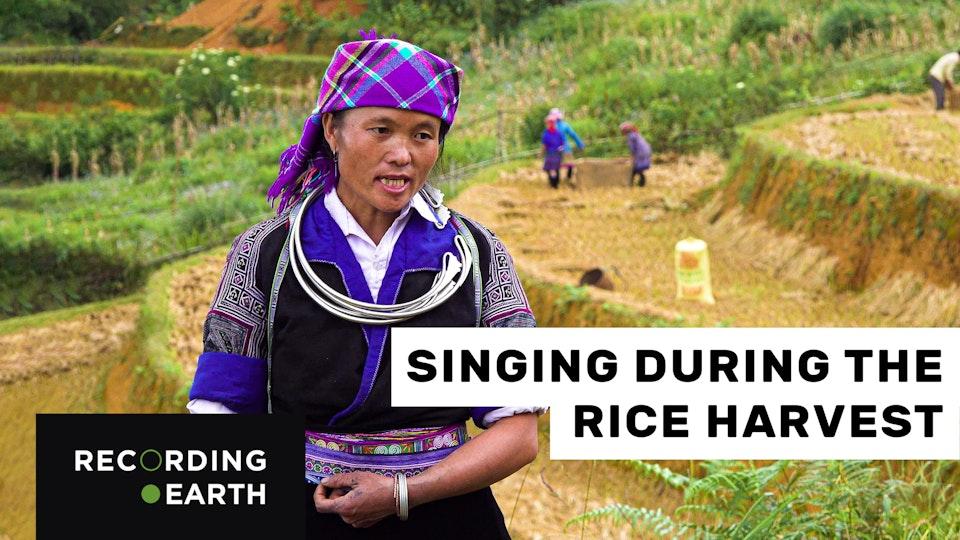 Hmong singing