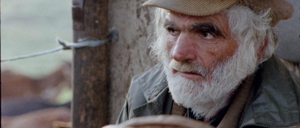 Duarte Domingos - António Zambujo - Catavento Da Sé