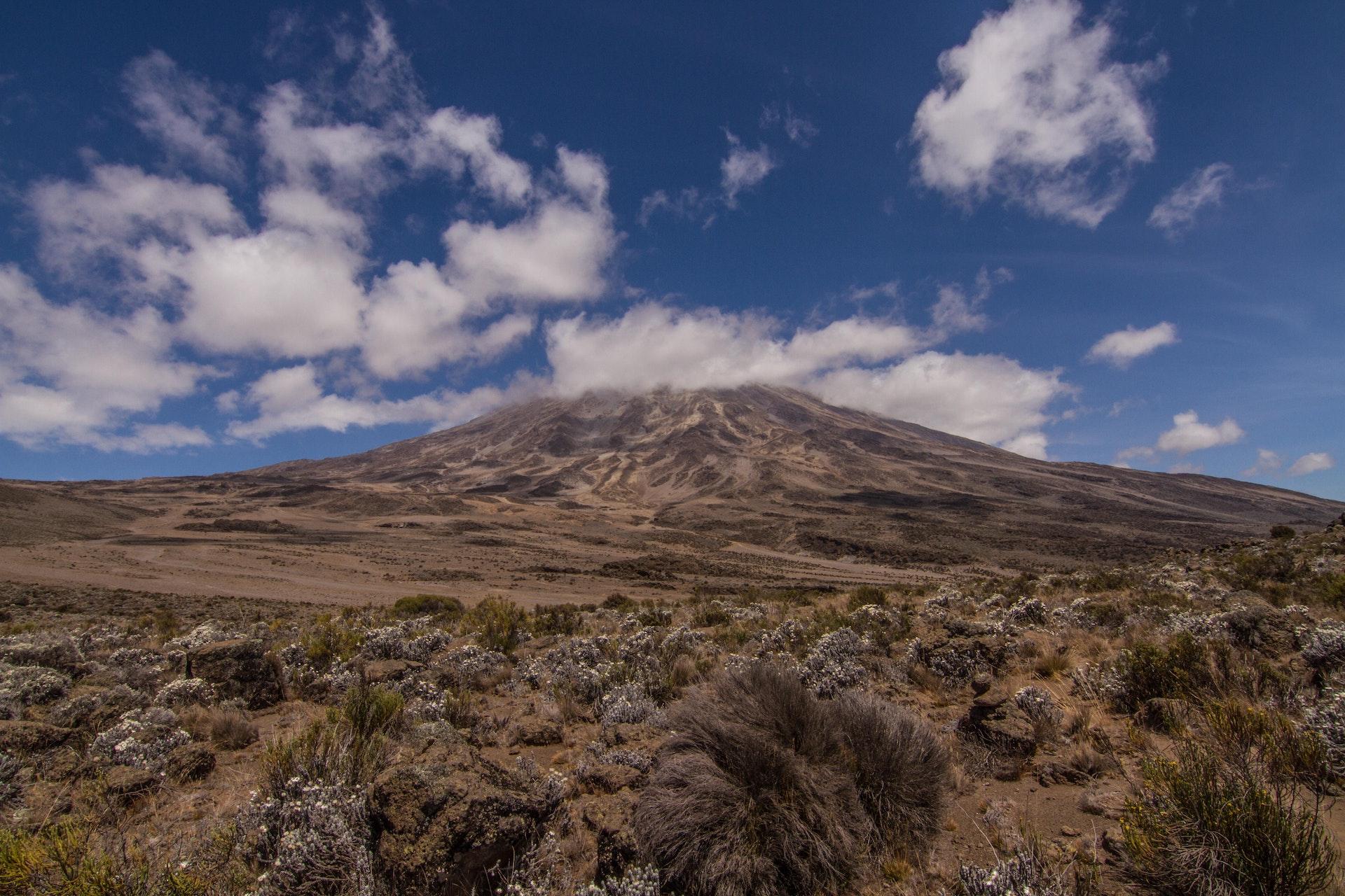 Kilimanjaro Pics-84