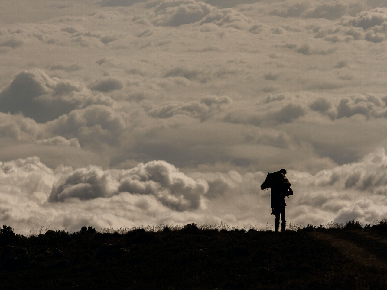 Kilimanjaro Pics-97