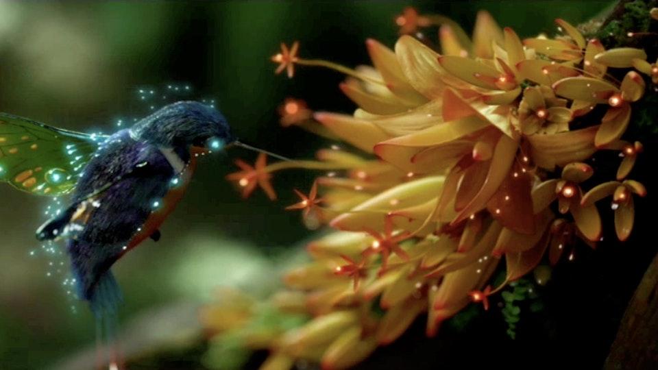 KELLOGG'S - Storybook - samsung-hummingbird-2