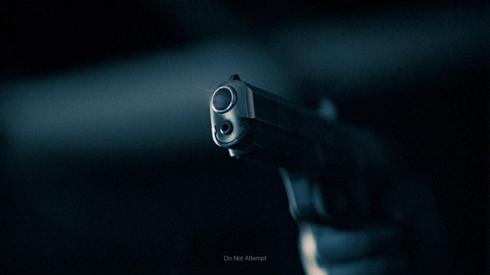 Gun Violence History Book | PSA INst