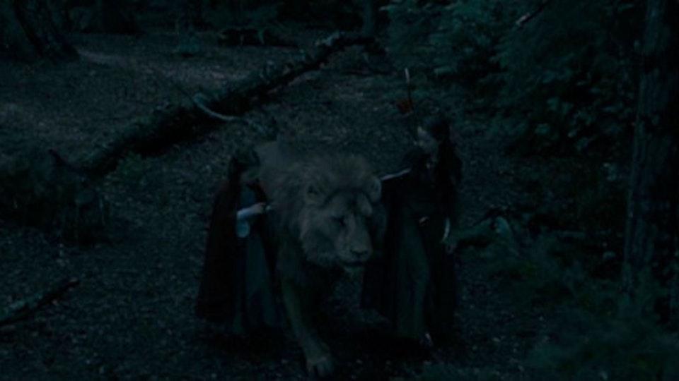 Film lion3_670