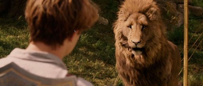 lion2_670