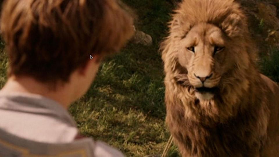 Film lion2_670