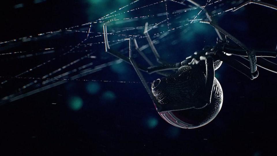 Fiat | Spider Screenshot 2019-09-12 11.42.44