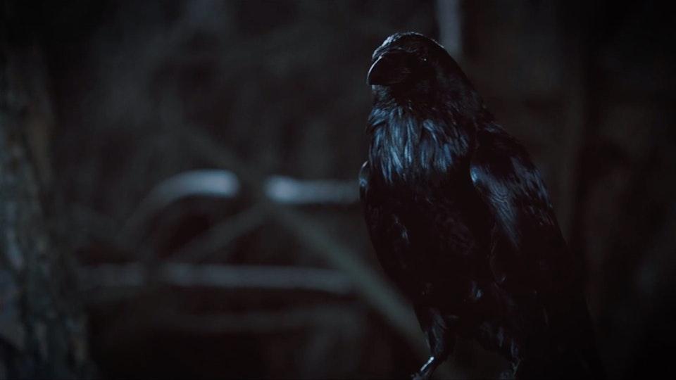 Infiniti Eau Rouge   The Beast Within Screenshot 2019-09-06 22.17.21