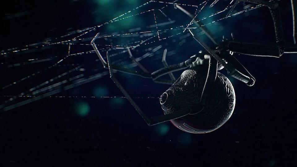 DIRTYLENSES - Fiat Spider | EndTag