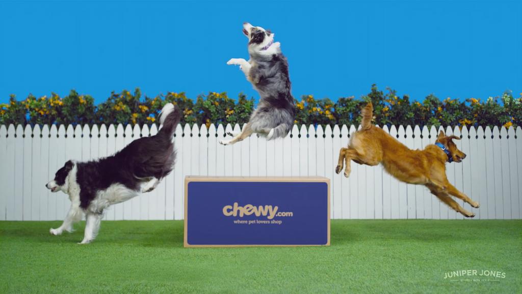 "CHEWY.com - ""Dance"""