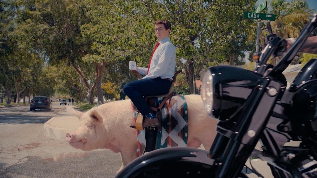 "THE GENERAL - ""Hog"""