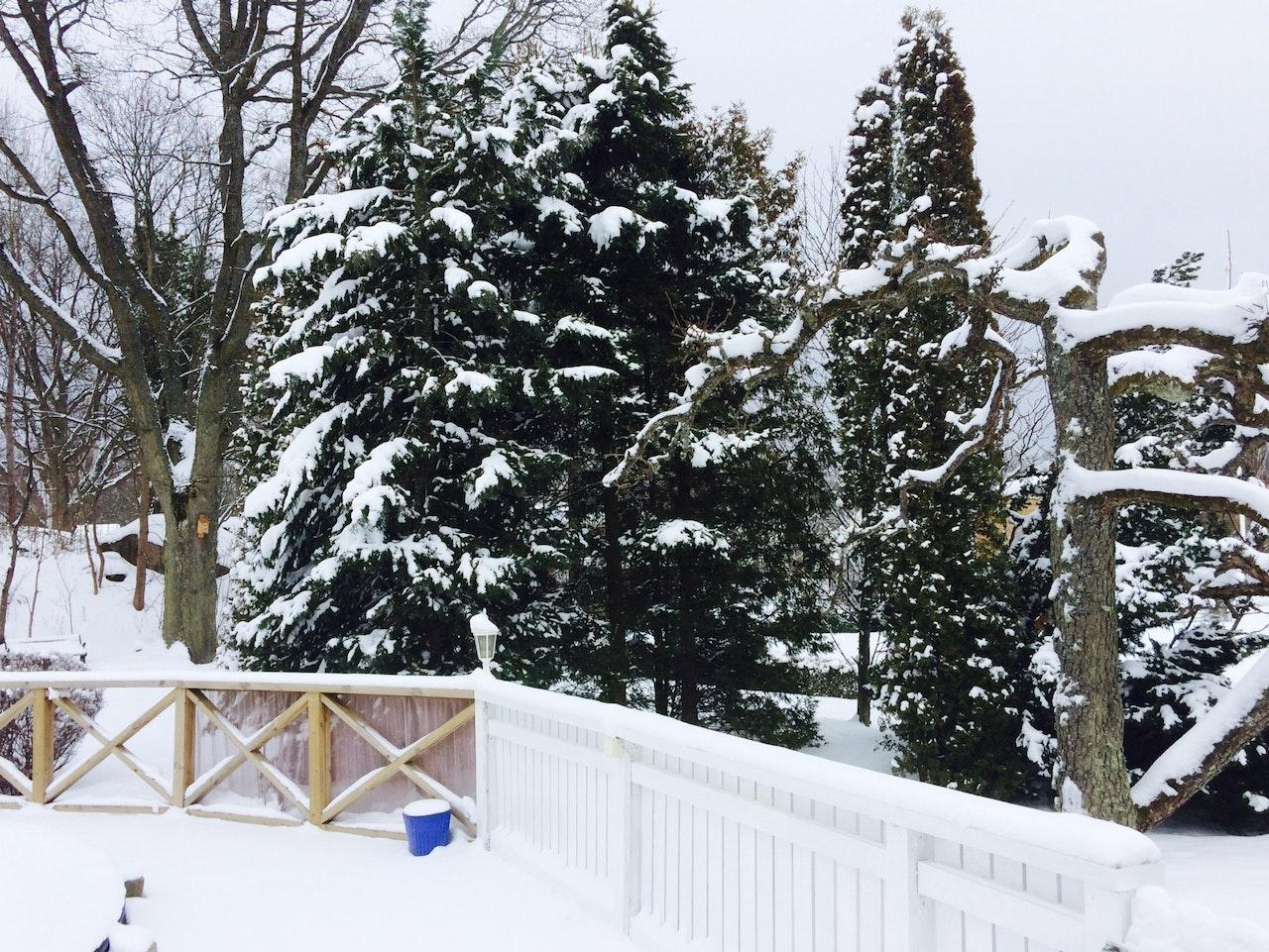 Filming in the snow in Sweden/ Filmando en la nieve en Suecia