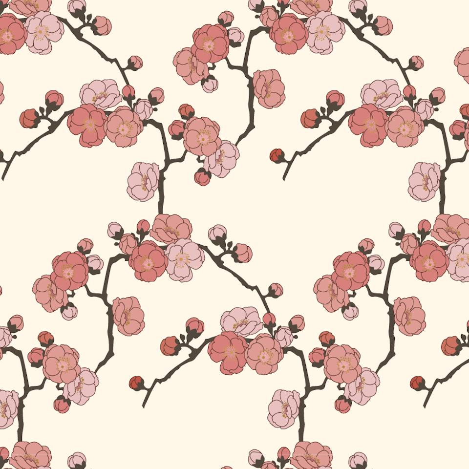 Japan - Ume Blüten, Japan
