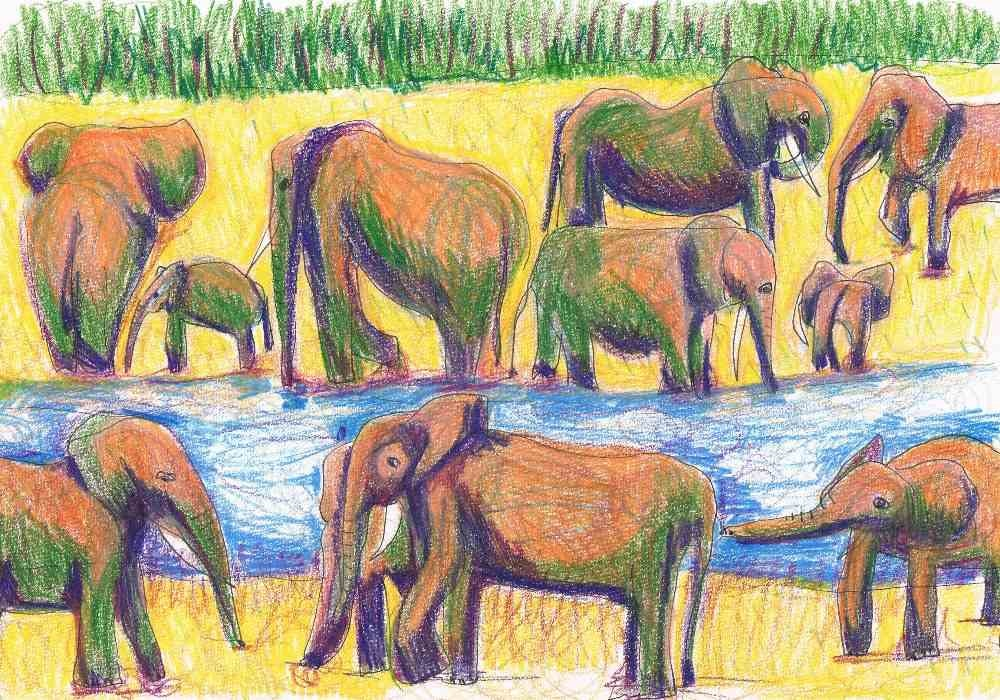 Einat Aloni - The elephants in the river, pastel on paper, 30X20 cm