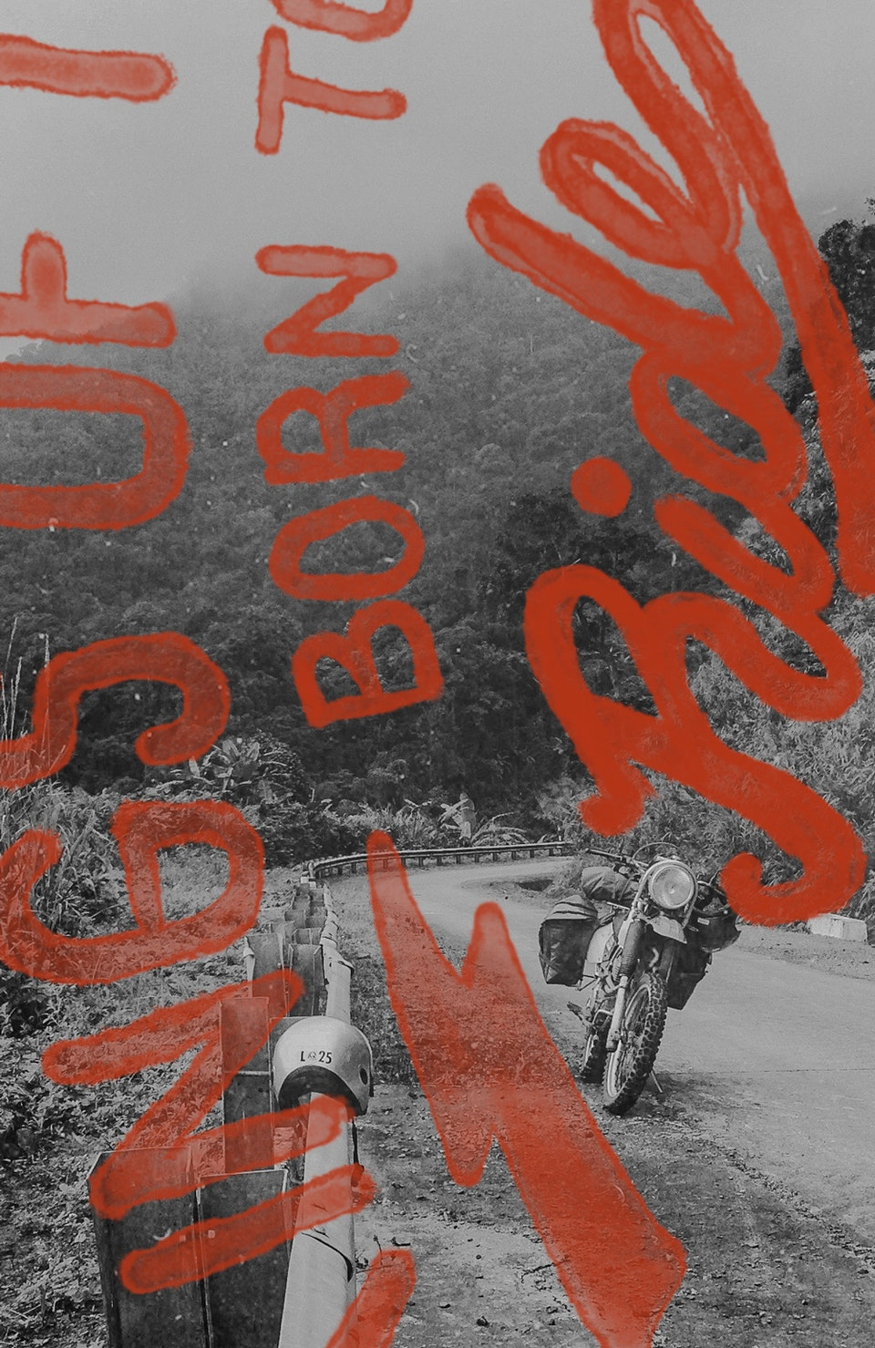 Vietnam by Dirtbike (2013) bikeroad_born_type