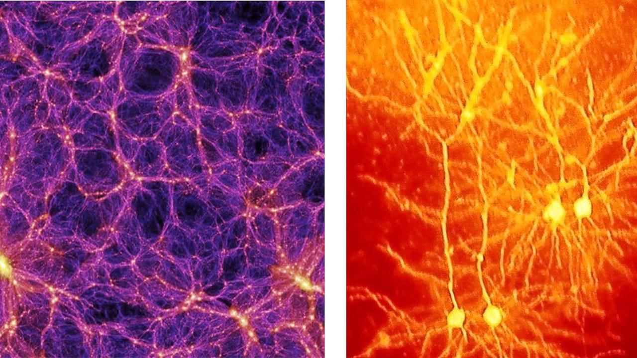 Explorations in Cosmic Materialism