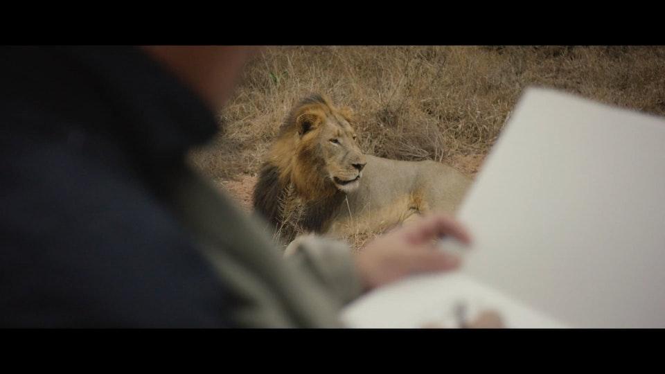 Blackbox - Louis Vuitton • Travel Book South Africa • Teaser