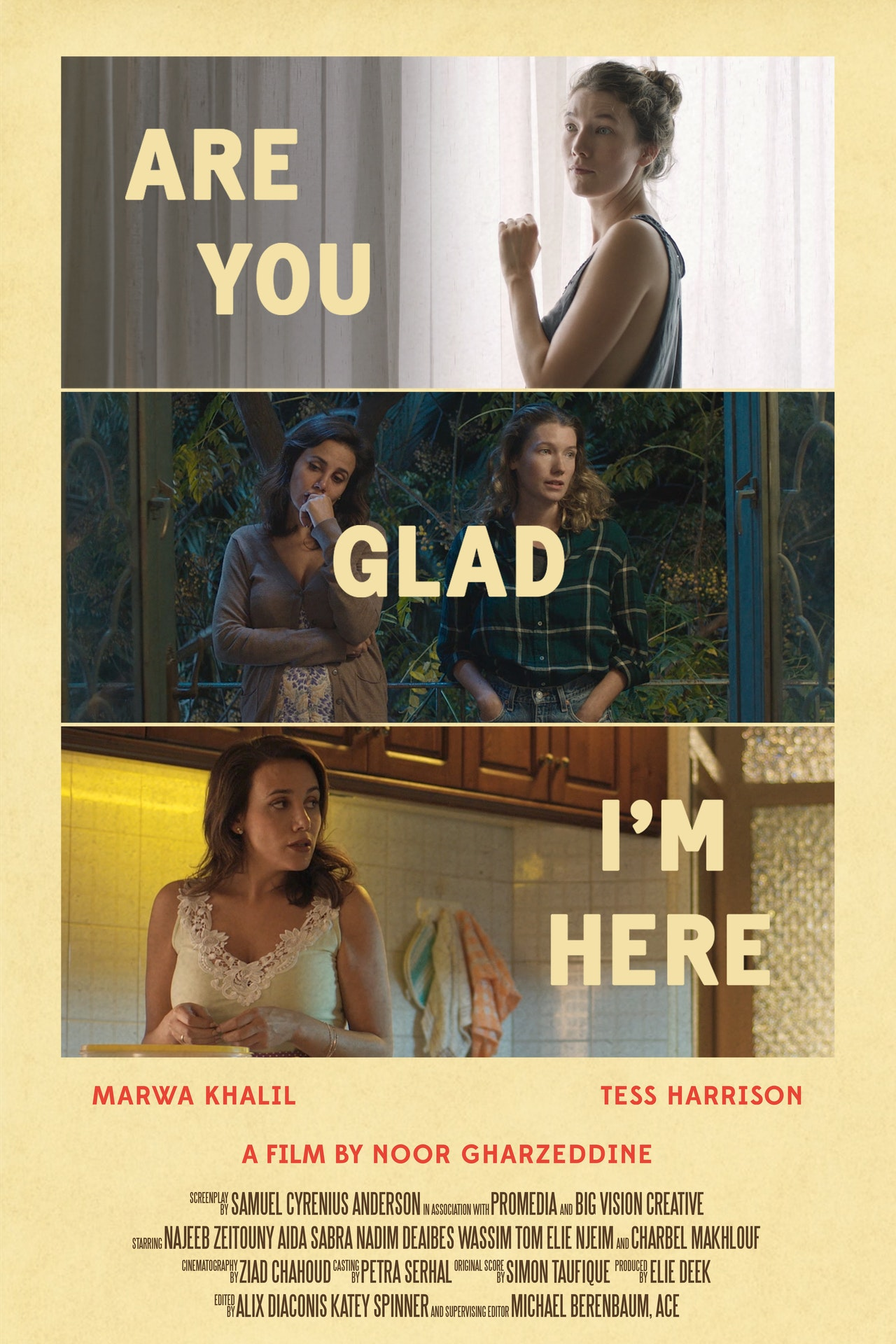 """Noor Gharzeddine's """"Are You Glad I'm Here is an actual masterclass in confronting Western prejudice and liberal simplicities"""""""