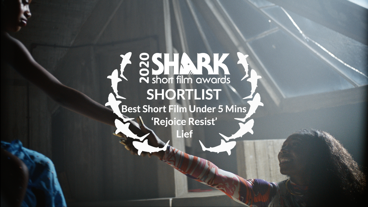 Three nominations at the Kinsale Shark Awards for 'Downstream', 'Rejoice Resist' and 'Earth Odyssey