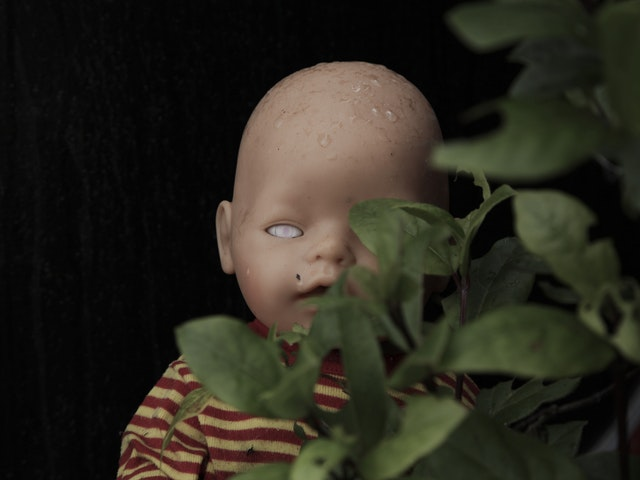 bush dolly