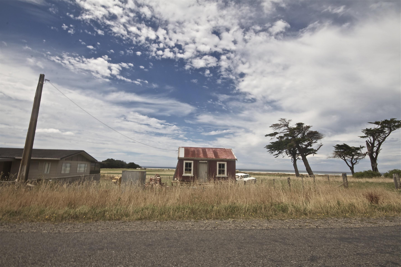 JONO SMITH - NZ bach
