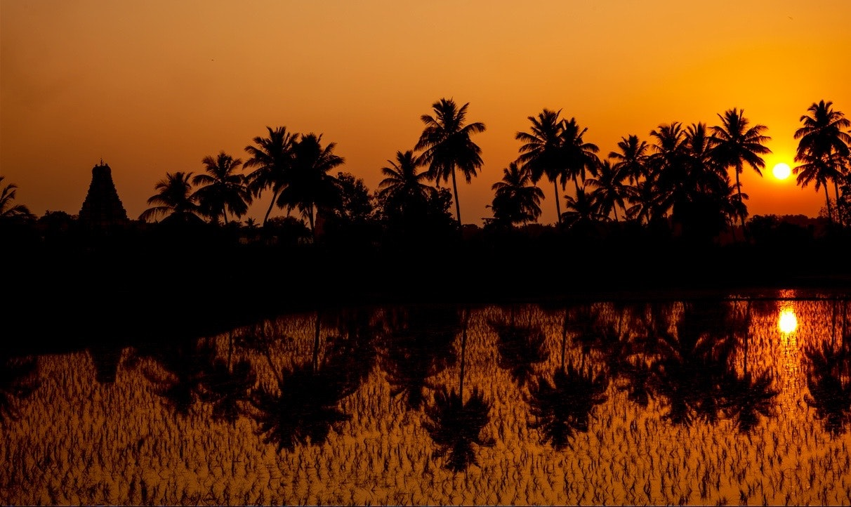 JONO SMITH - india sunset