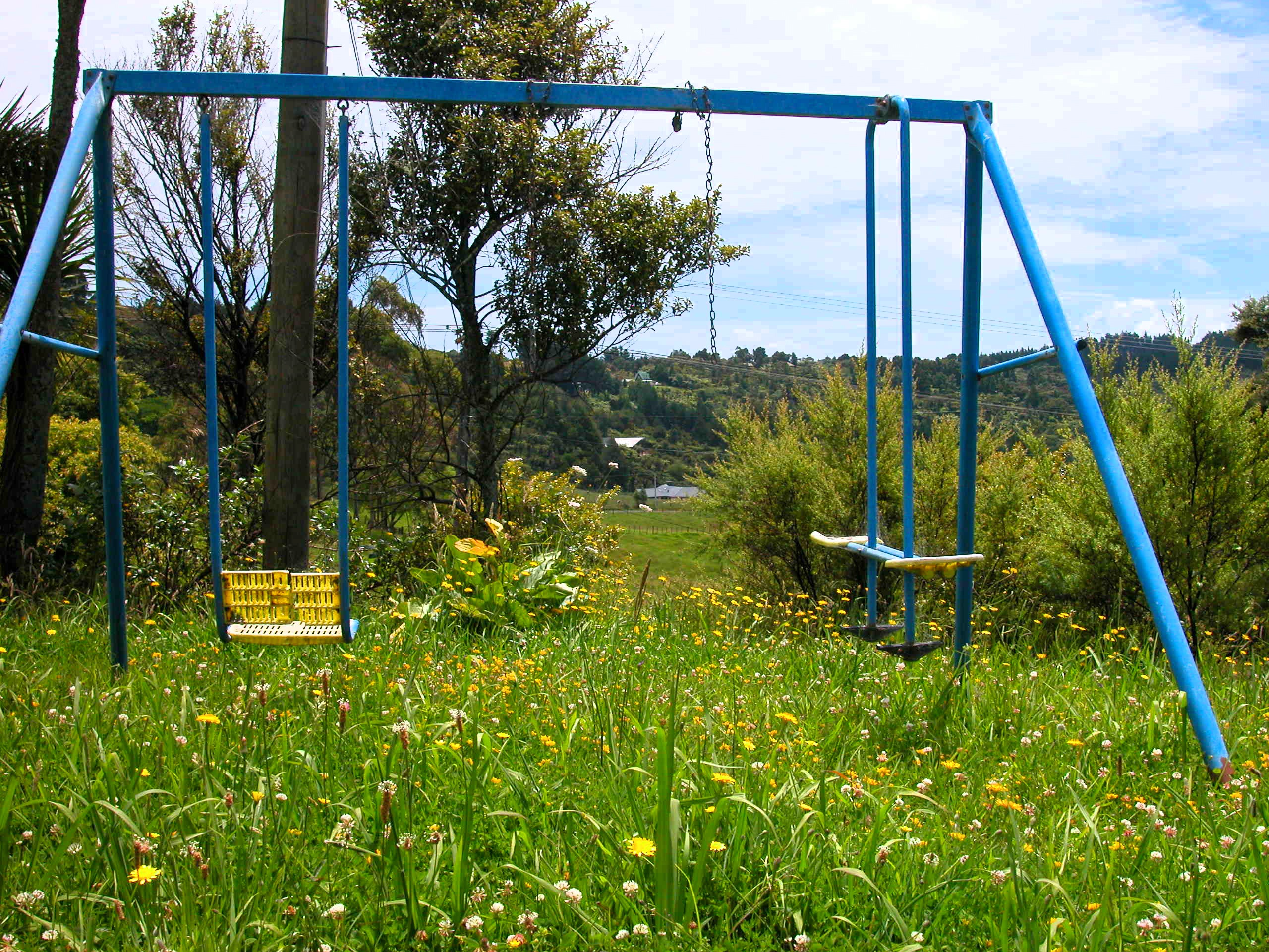 JONO SMITH - nz garden