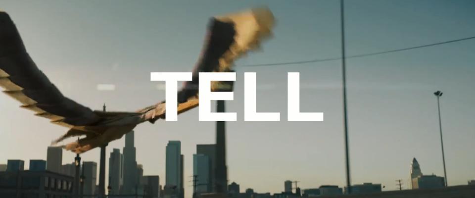 Show Don't Tell / Ripomatic Manifesto