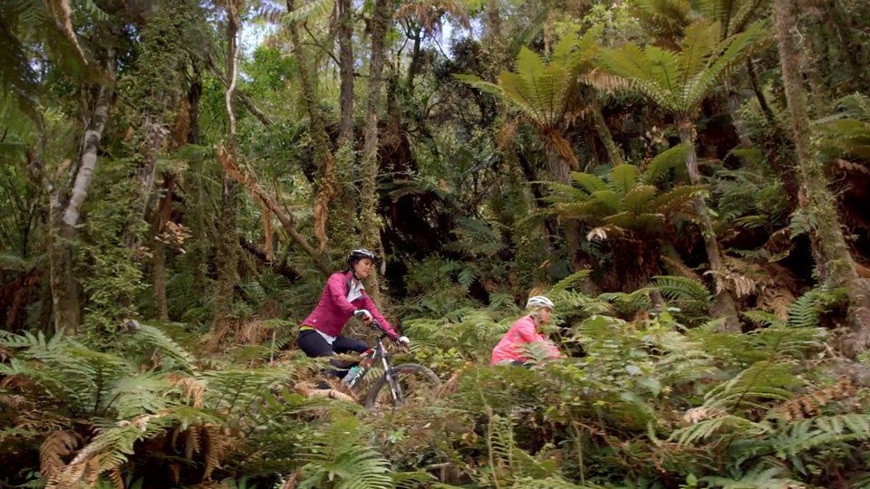 Tourism New Zealand - Every day a different trail with Megan Gale: The Timber Trail