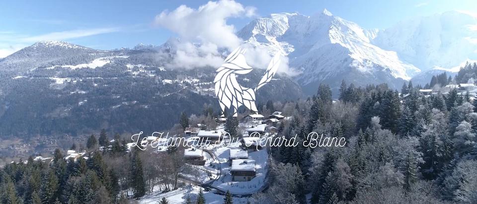 SLEAK - Le Renard Blanc