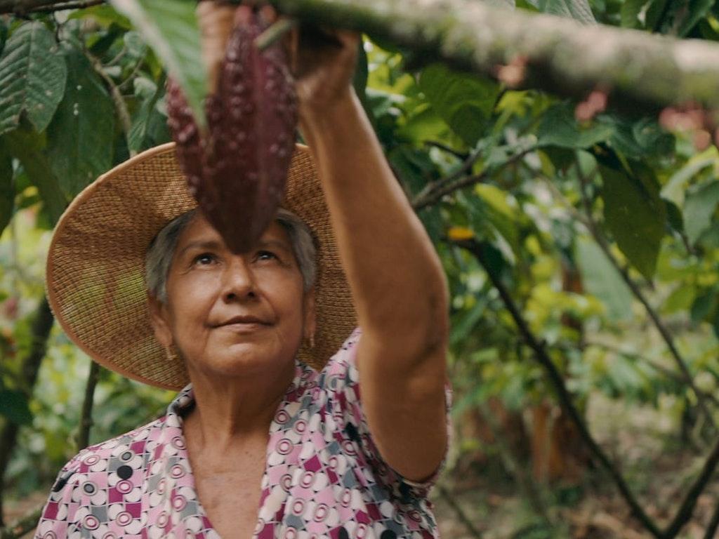 "Dove // ""A Culture of Cocoa""  Director: Pamela Romanowsky  Agency: Refinery 29"