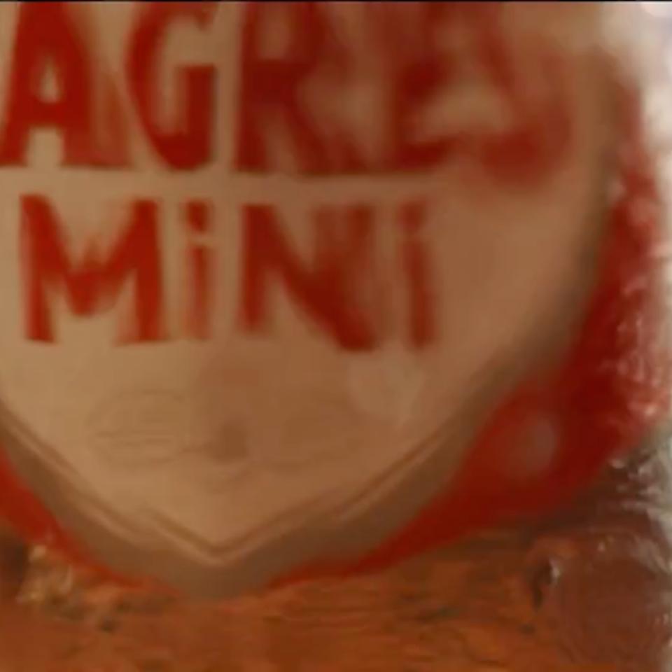 Sagres Mini Angola IMG_2135