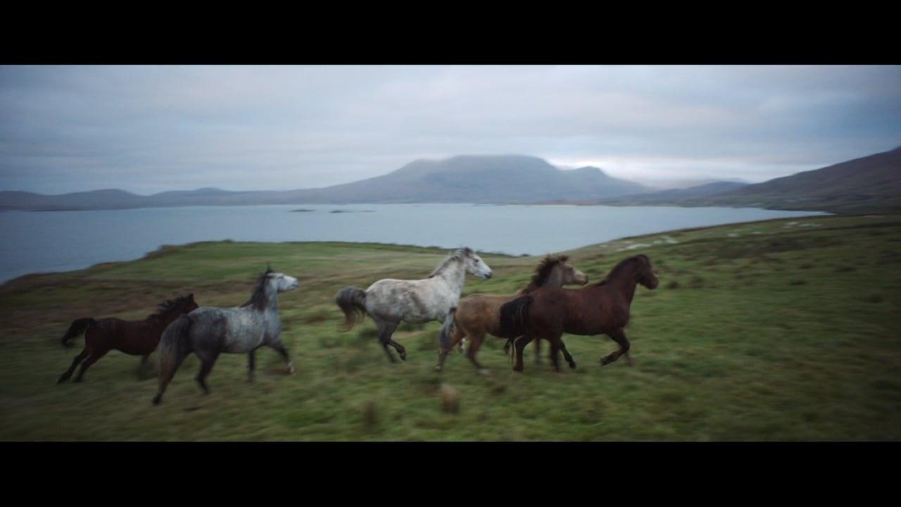 TOURISM IRELAND -