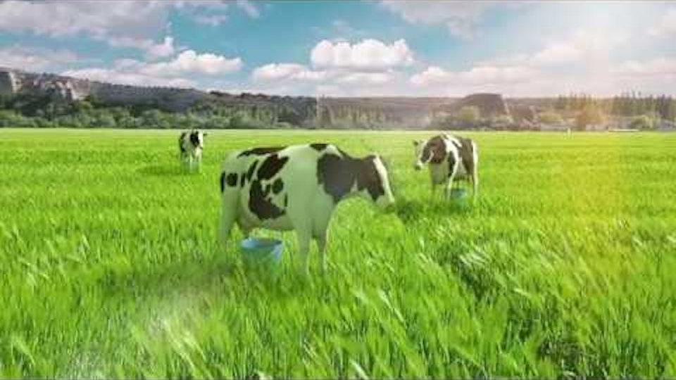 Aptamil - Follow-on Milk