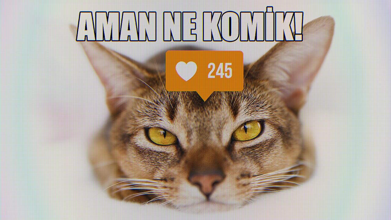 Ülker Caramio -  Like Movement -