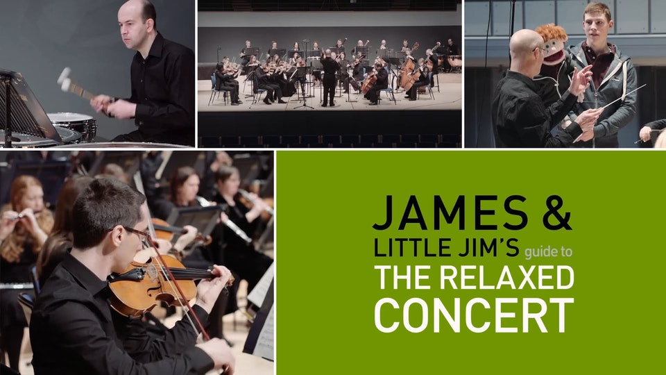 James & Little Jim's Guide to The Relaxed Concert
