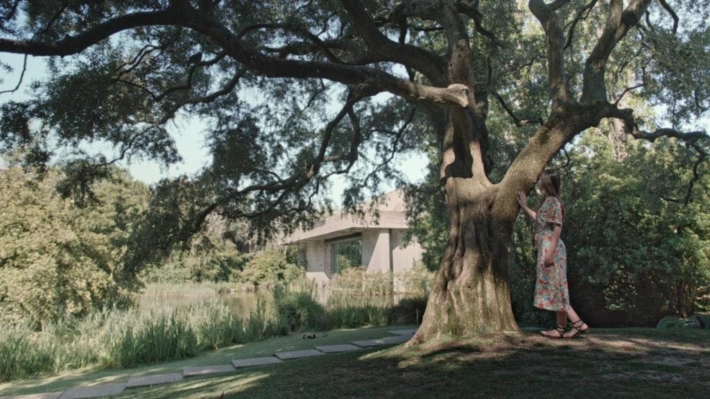Into Time | Gulbenkian Garden