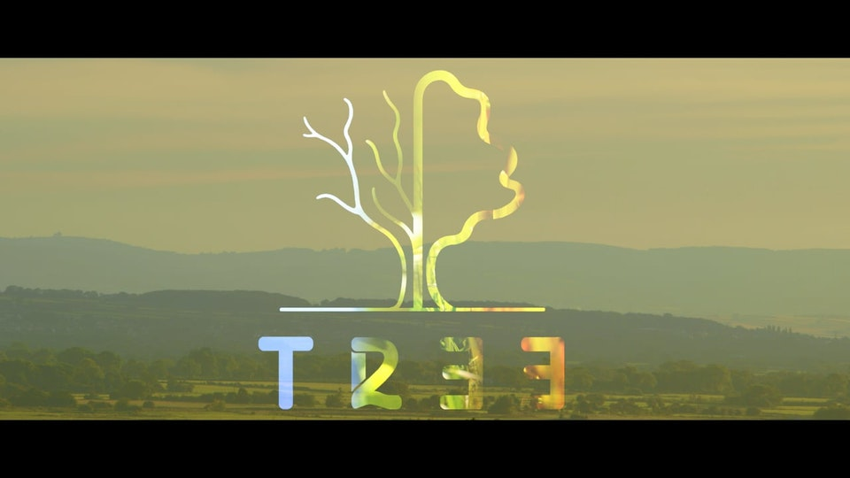 Tree233 - The Life Of An English Oak