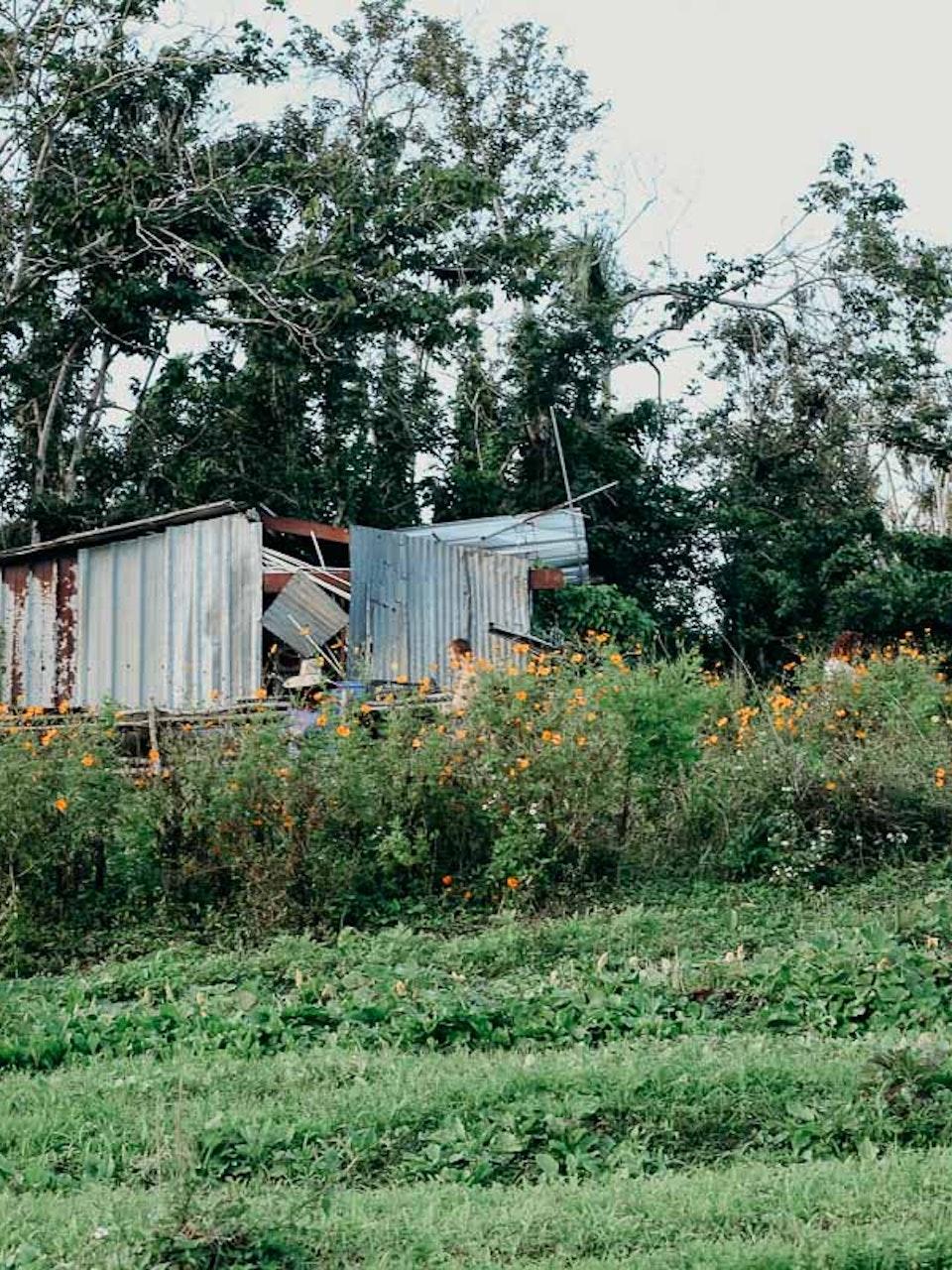 Fondo de Resiliencia Puerto Rico: Aibonito Brigade