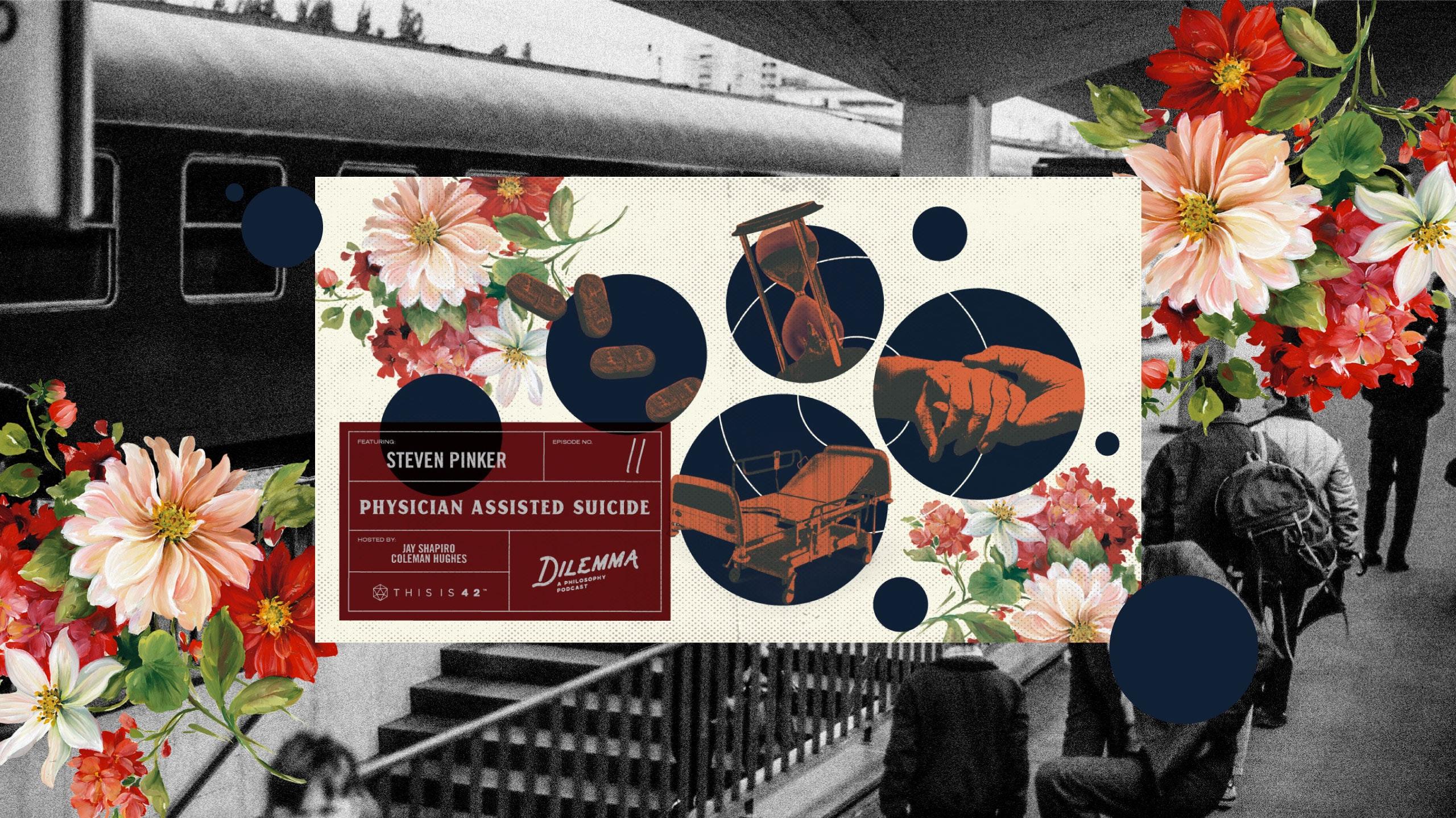 ALDAIN – Content Creator • Design • Sydney - 20_2103_Portfolio_Design_DilemmaPodcast_F
